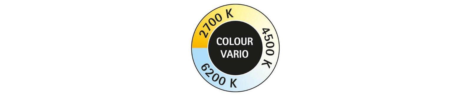 Button Colour Vario