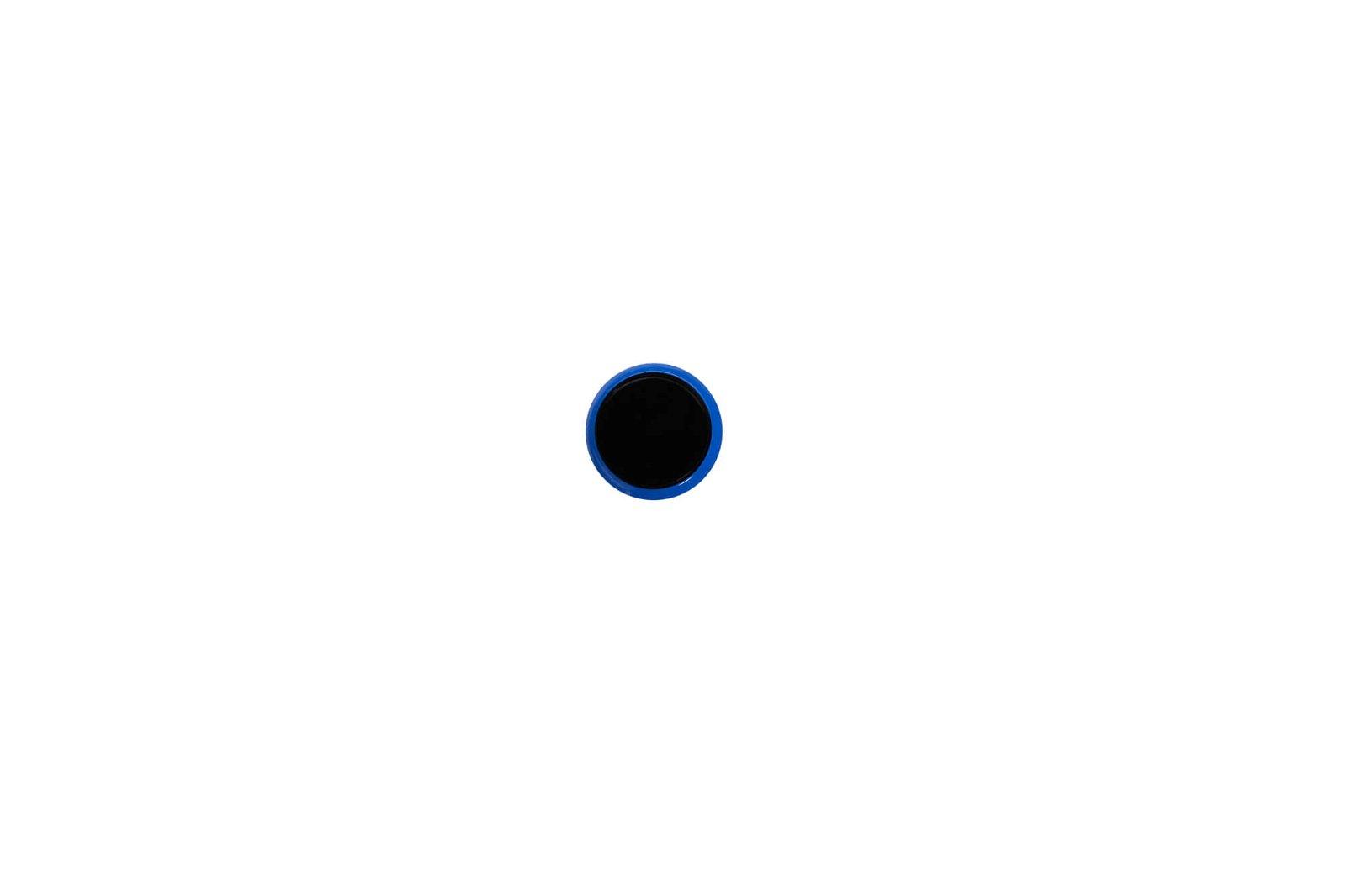 Kugel-Magnet Ø 30 mm, 0,6 kg Haftkraft, 10 St./Set, blau