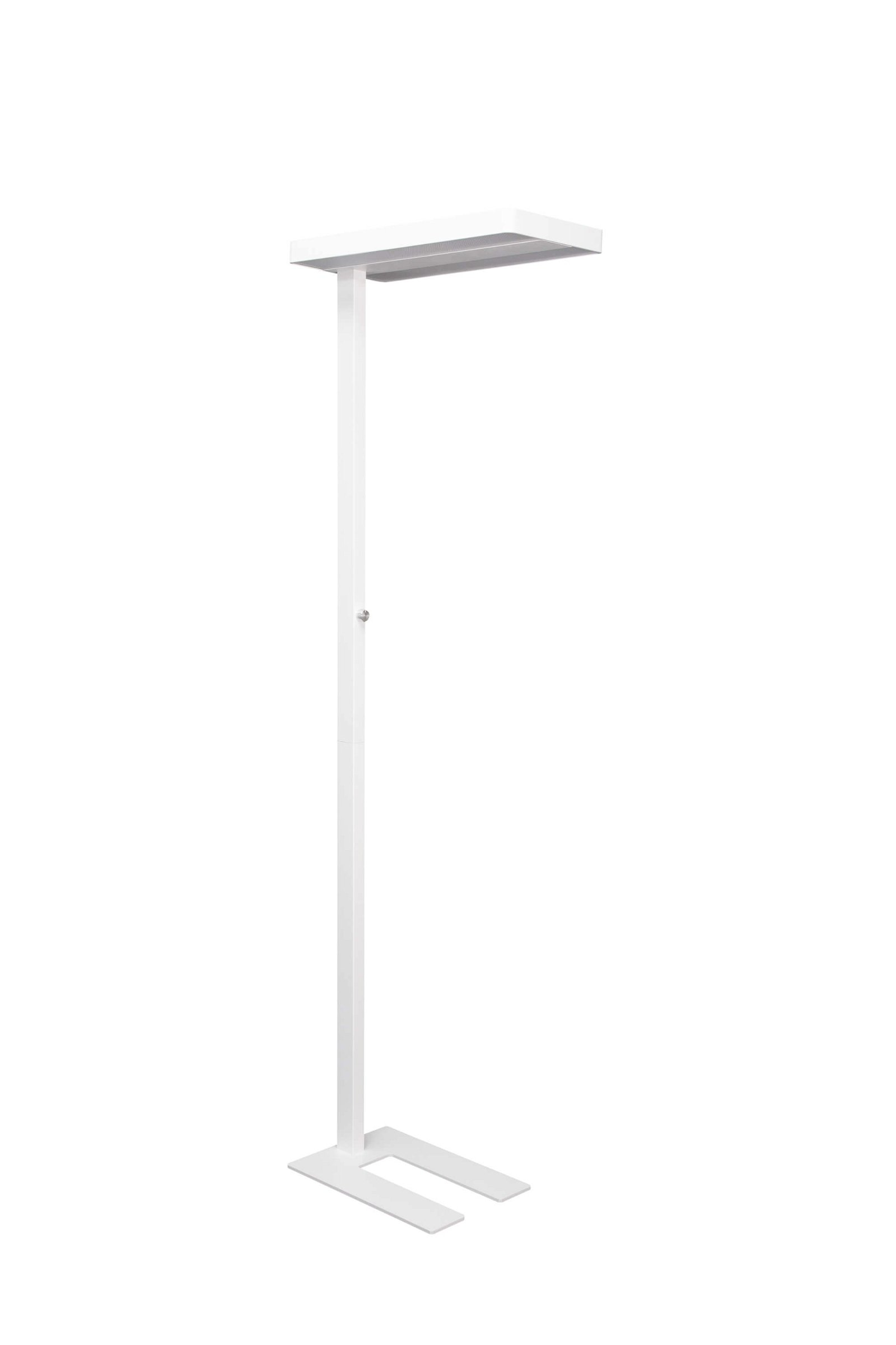 LED-Standleuchte MAULjaval, dimmbar