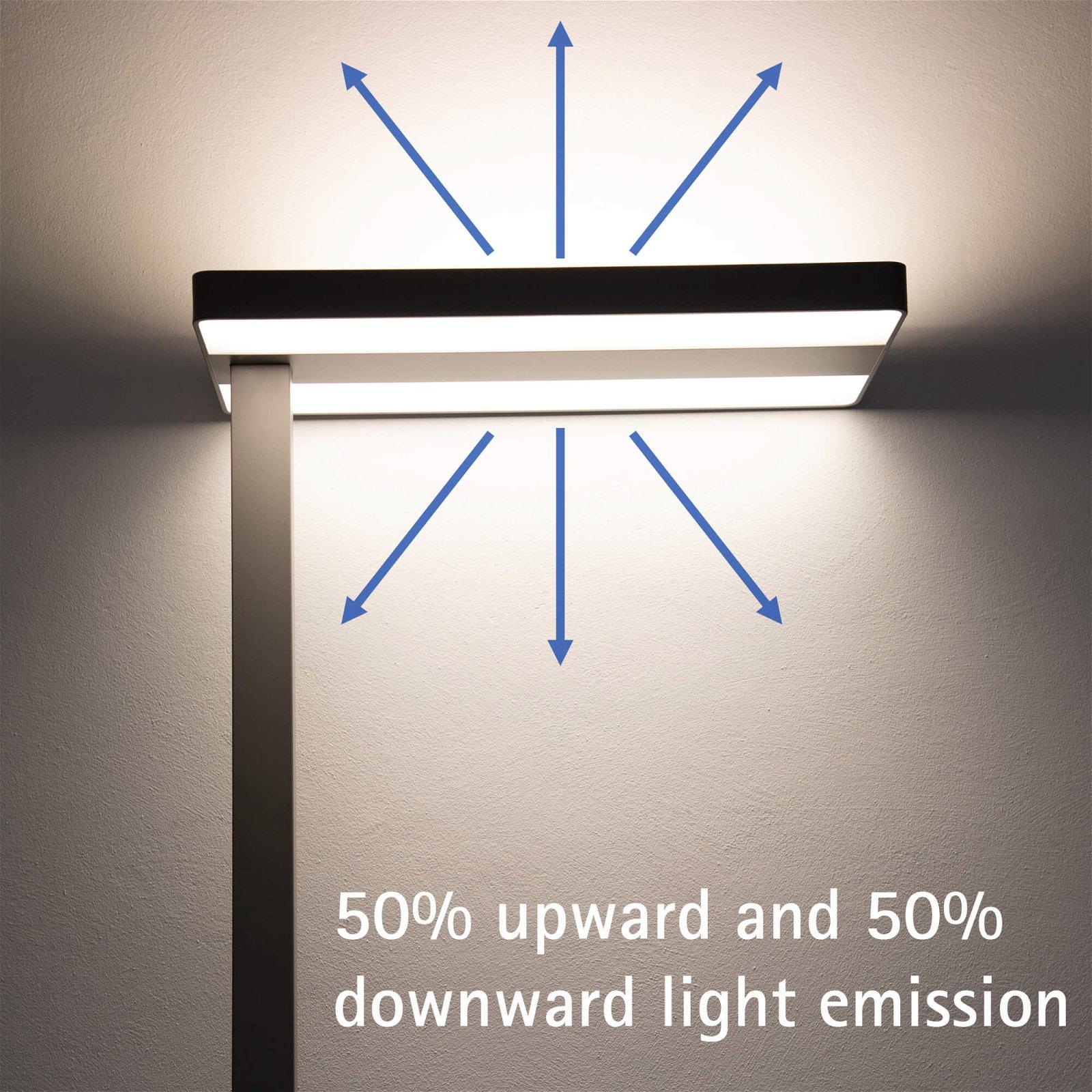 LED-Standleuchte MAULjaval