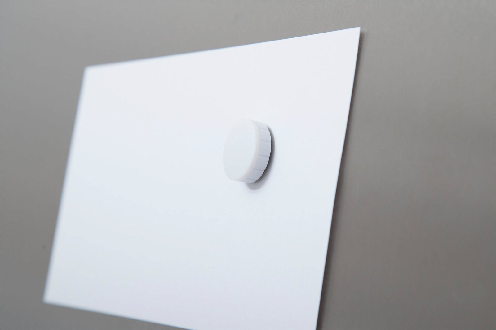 Magnet MAULsolid Ø 20 mm, 0,3 kg Haftkraft, 10 St./Ktn., weiß