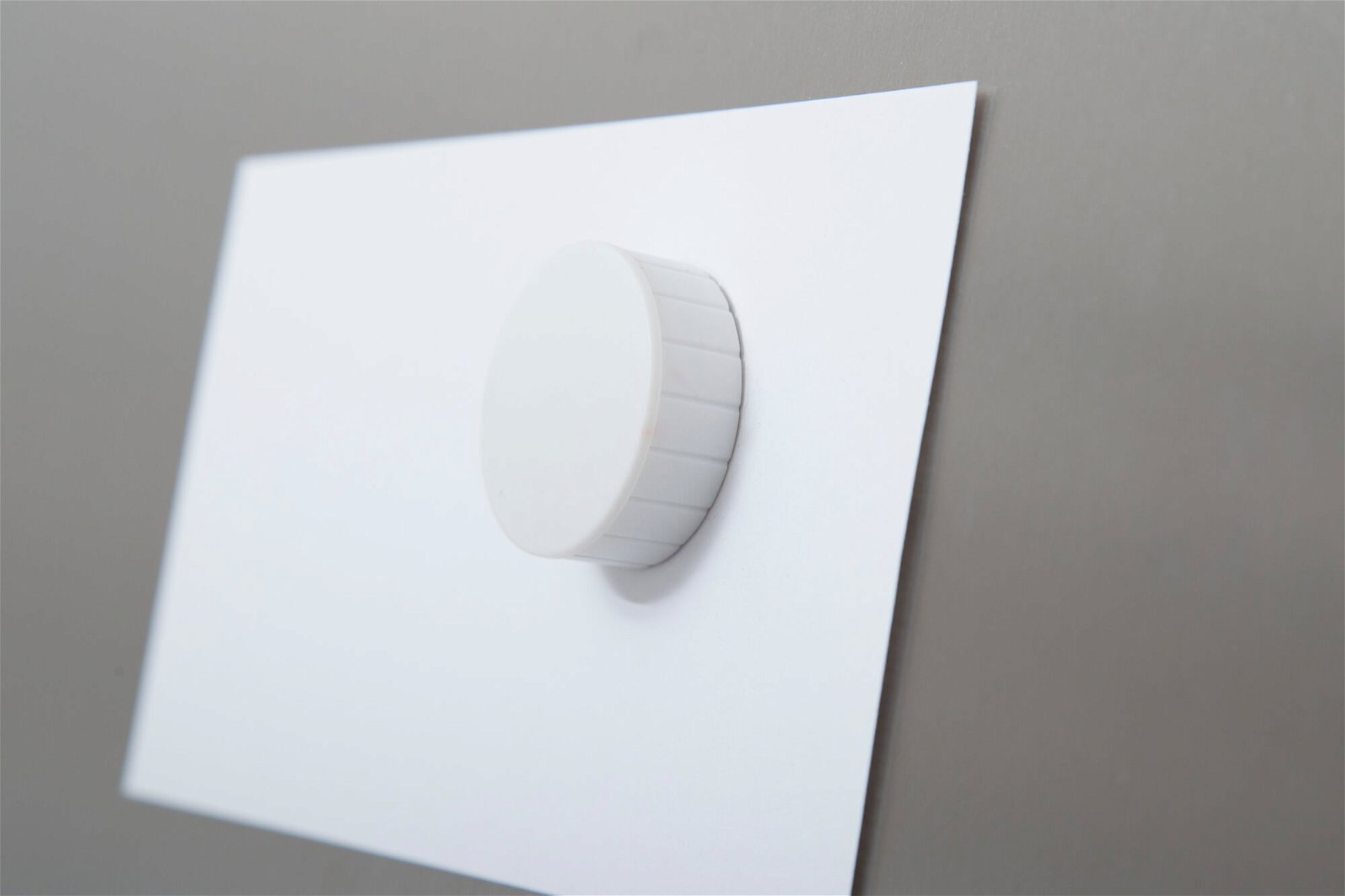 Magnet MAULsolid Ø 38 mm, 2,5 kg Haftkraft, 10 St./Ktn., weiß