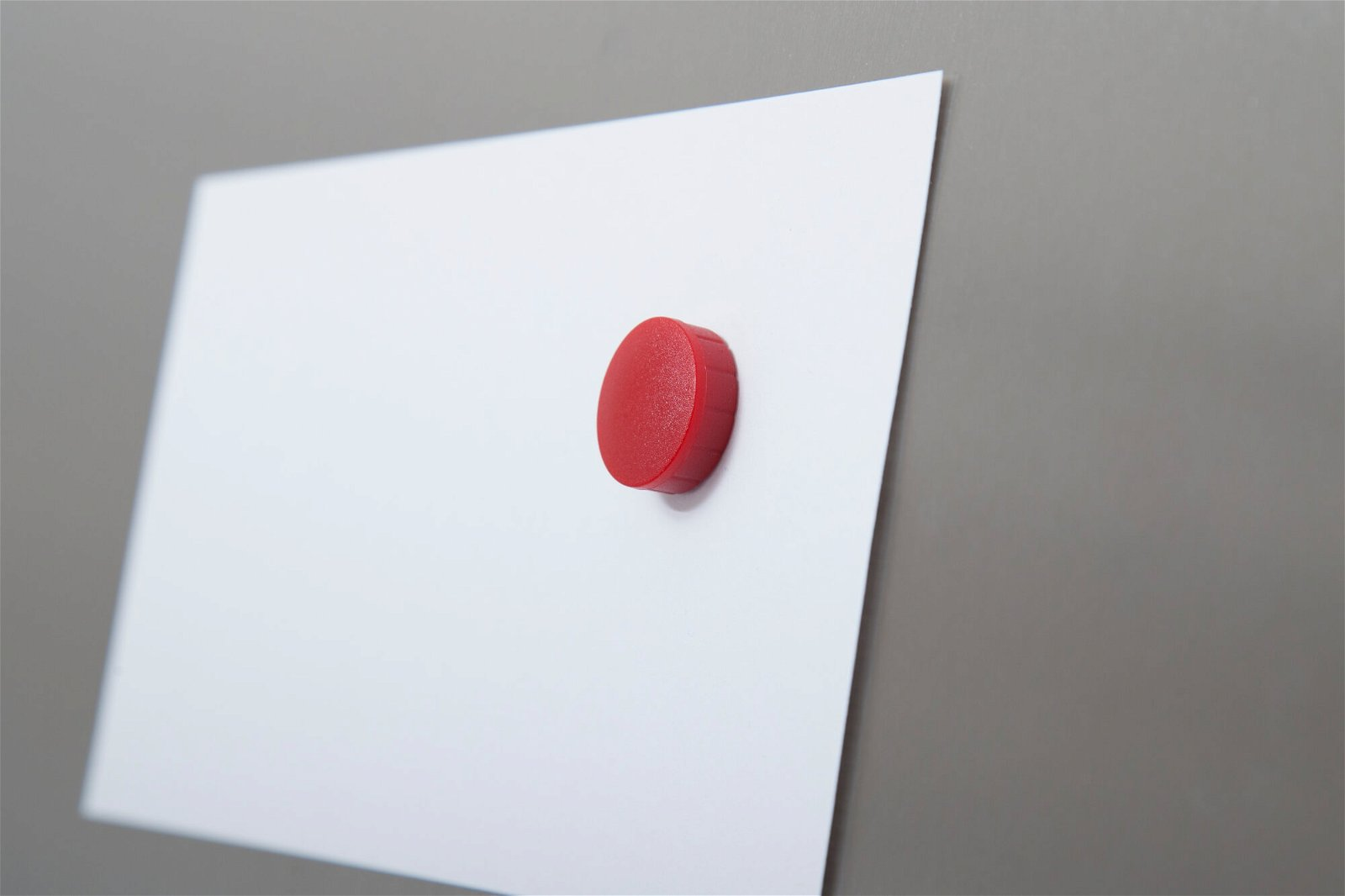 Magnet MAULsolid Ø 20 mm, 0,3 kg Haftkraft, 10 St./Ktn., rot